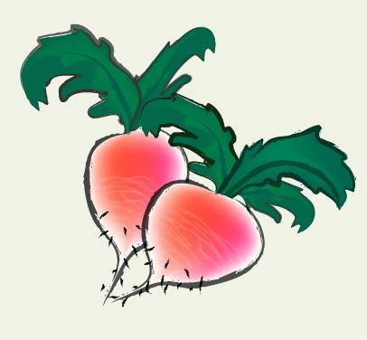AI基础教程,手把手教你用Illustrator制作彩色萝卜