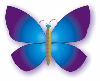 CDR实战教程,教你如何用造型工具与交互设置绘制蝴蝶